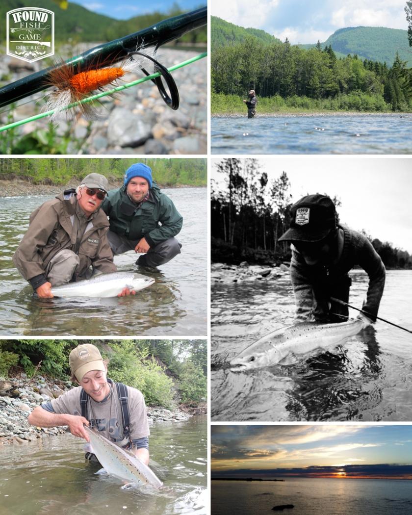 salmonTuesdayMay18